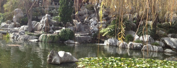 Chinese Garden of Friendship is one of Sydney To Do (mostly free/cheap).