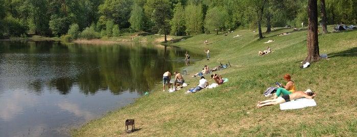 Олений (Ольняный) пруд is one of Lugares favoritos de Igor.