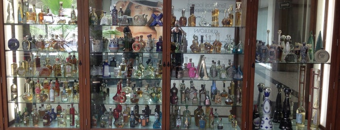 Museo Sensorial del Tequila is one of Gespeicherte Orte von Renato.
