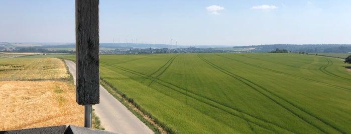 Kastellauner See is one of Around Rhineland-Palatinate.