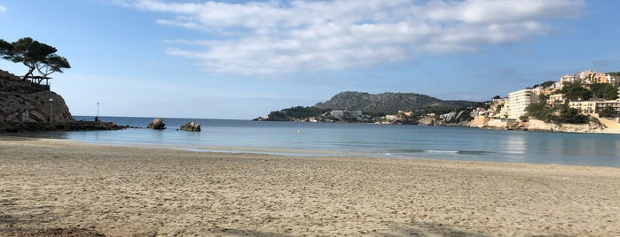 Platja des Pouet / Platja Palmira is one of Mallorca.