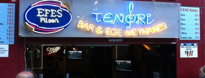 Tenori Ege Meyhanesi is one of สถานที่ที่ Ezgi ถูกใจ.