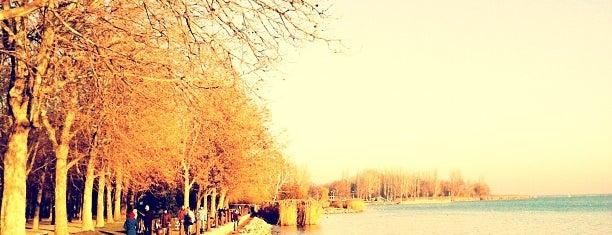 Tagore sétány és park is one of Ungarn.