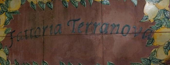 Fattoria Terranova is one of Naples, Capri & Amalfi Coast.