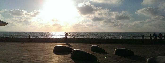 Summer in Tel-Aviv
