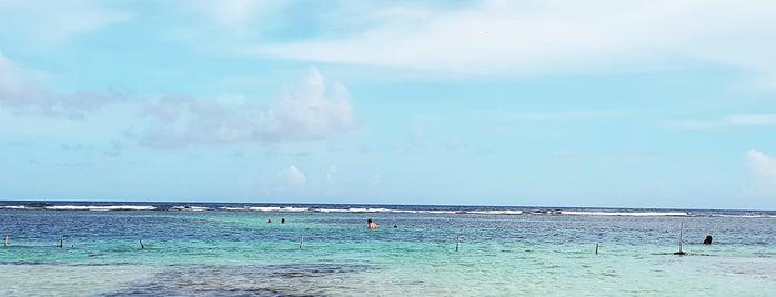 Yaya Beach Club is one of Locais curtidos por Oscar.