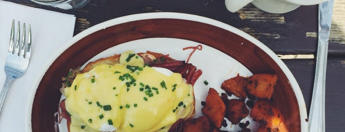 Forrest Point is one of Brunch.