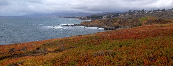 Fiscalini Ranch Preserve is one of Central CA Coast.