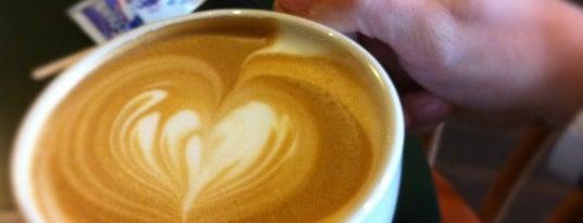 Spike's Coffee & Tea is one of SF.