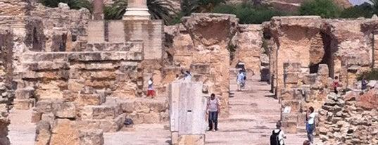 Acropolium de Carthage is one of Tunis  #4sqCities.