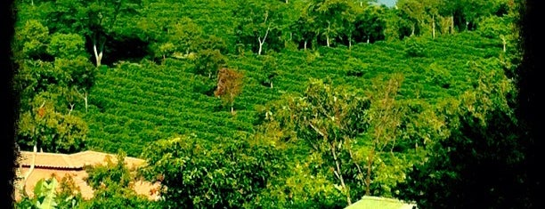Doka Estate is one of Costa Rica.