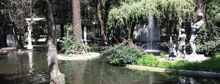 Jardín de adultos Mayores is one of CDMX.