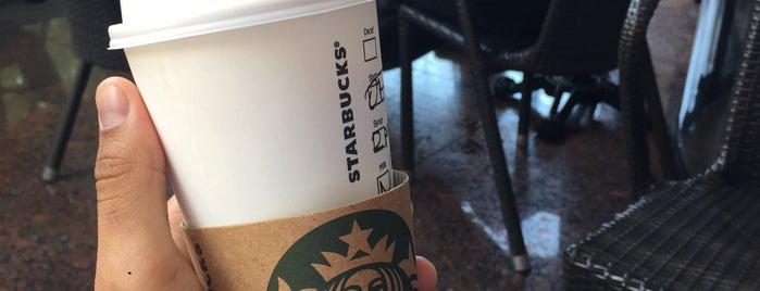 Starbucks is one of Lieux qui ont plu à Sertan.