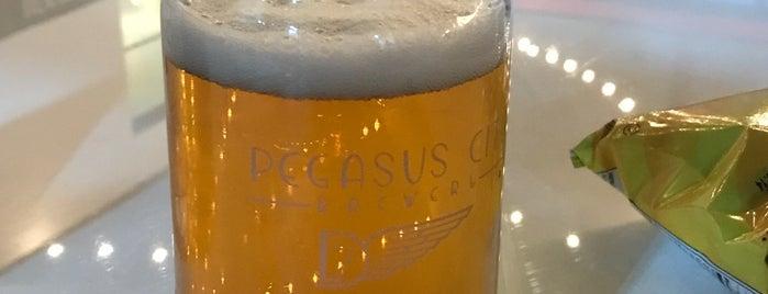 Pegasus City Brewery is one of Lugares favoritos de Gary.