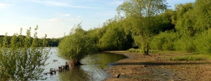 Ruislip Woods is one of 1000 Things To Do In London (pt 2).