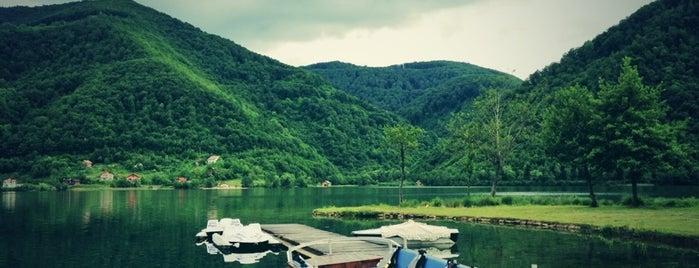 Vrelo Bosne is one of Doğal Güzellikler.