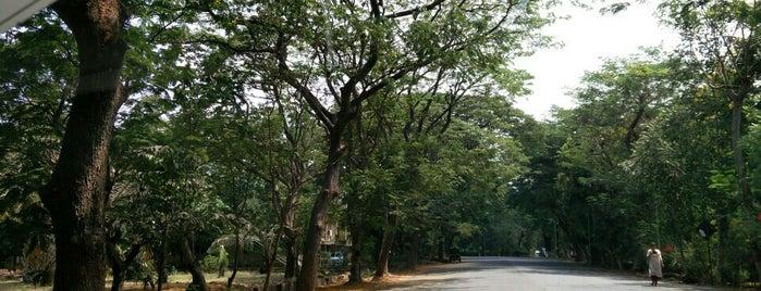 University of Mumbai is one of life of learning.