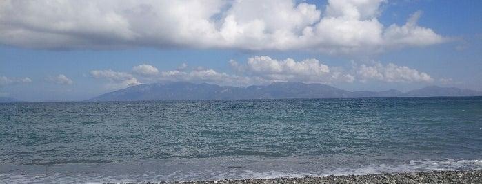 Agios Fokas beach cafe is one of Posti che sono piaciuti a Zafer.