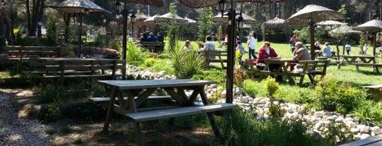 Çiftlik Restaurant&Cafe is one of Lugares guardados de sadee.