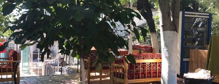 Nihal : понравившиеся места