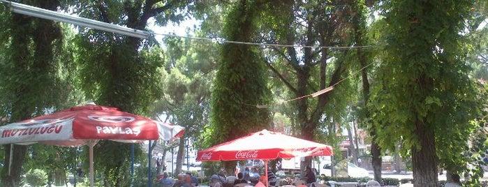 Şehit Turhan Bayraktar Parkı Çay Bahçesi is one of Lieux qui ont plu à 🌜🌟hakan🌟🌛.