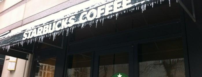 Starbucks is one of Streeterville & Gold Coast.