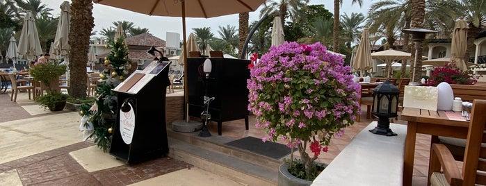 Al Basha is one of Dubai & the gulf.
