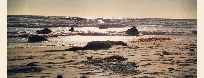 Coal Oil Point is one of Santa Barbara.