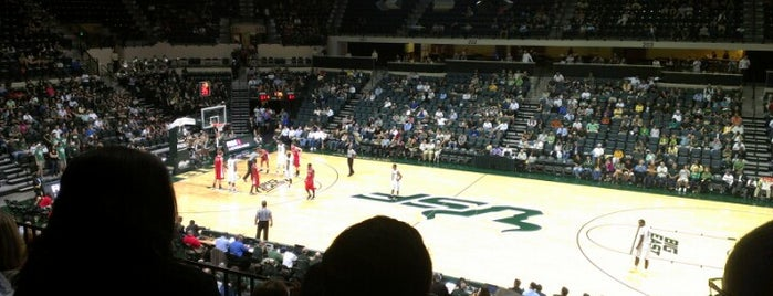 Yuengling Center is one of Sporting/Concert....
