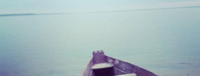 Озеро Світязь (Світязьке) is one of Lieux qui ont plu à Alice🍒.
