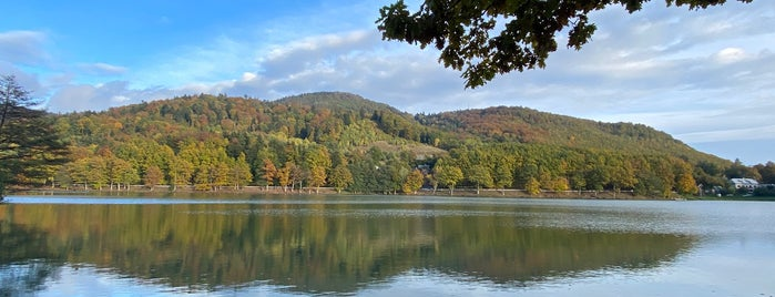Počúvadlianske jazero is one of Словакия.