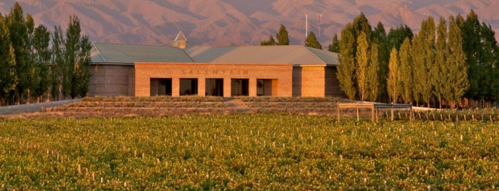Bodegas Salentein is one of Mendoza.