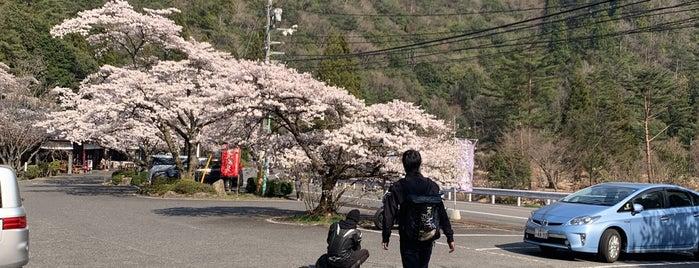 小瀬川温泉 is one of Orte, die ZN gefallen.