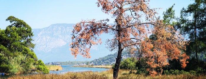 Azmakbaşı is one of Lugares favoritos de Gamze.