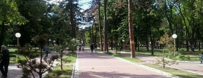 Veliki park is one of Make sure to visit in Kragujevac.