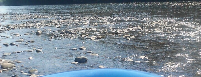 Delaware River Tubing is one of Dirty Jersey.