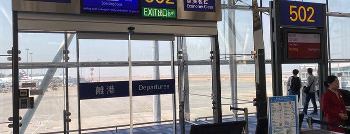 Gate 502 is one of Shank 님이 좋아한 장소.
