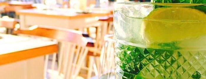 Fino is one of Santorini 🇬🇷.