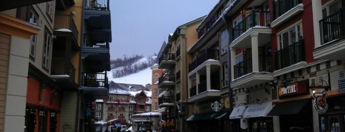 Blue Mountain Resort is one of Posti che sono piaciuti a Alled.