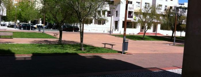 Jardim da Alameda Roentgen is one of Lugares favoritos de Rui.