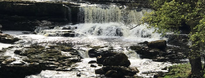 Aysgarth Falls is one of Tempat yang Disukai Carl.