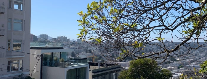 Russian Hill is one of SFLA.