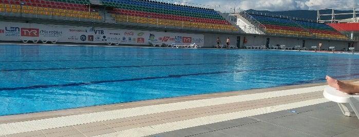 Olympic Pool is one of Тбилиси.