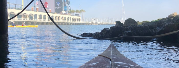 City Kayak is one of Top 5 Things To Do in San Francisco.