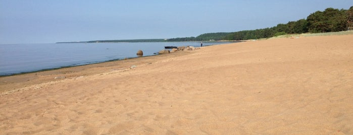 "Пляж ""Детский"" is one of สถานที่ที่บันทึกไว้ของ Fedor."