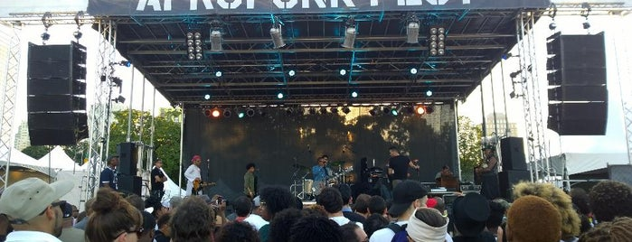 AFROPUNK Festival 2014 is one of Jordan 님이 저장한 장소.