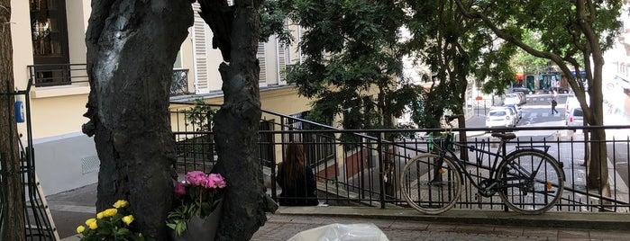 Square Auguste-Mariette-Pacha is one of Quartier Latin.