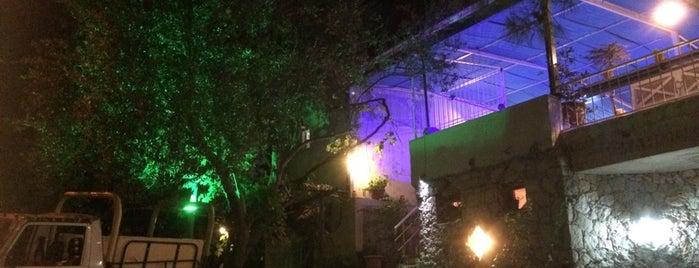 Mahmut's Restaurant is one of Lugares favoritos de Irfan.
