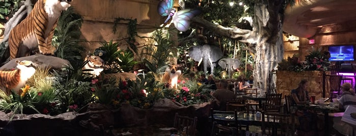 Rainforest Cafe is one of Alex & G.