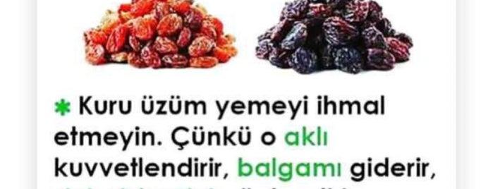 Kumrucu İso 35.5 Maslak is one of Boğaz Hattı.